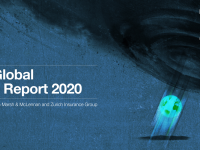The Global Risks Report 2020 Cover - WEF